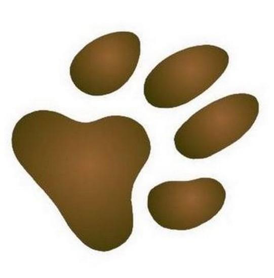 Anisp042 pochoir patte de chien style pochoir