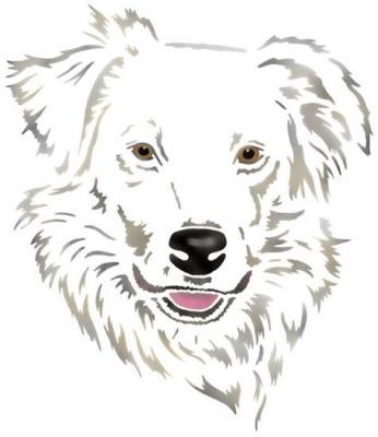 Anisp087 pochoir chien blanc poils longs style pochoir