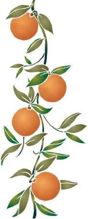 Fl012 pochoir fruit oranges verticales style pochoir 1