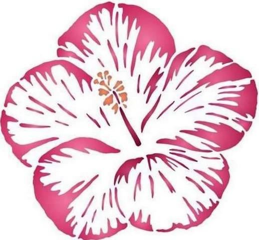 Fl194 fleur d hibiscus