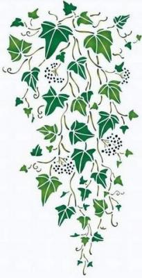 Fl196 pochoir lierre tombant style pochoir