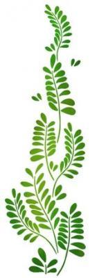 Fl254834 branche de feuilles montante pochoir
