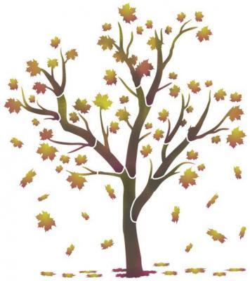 Stipo1020 arbre automnep