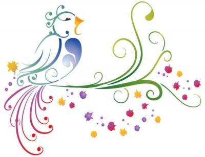 Stipo326 oiseau lyre