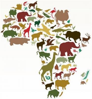 Afri3001 carte de l afrique animaux africains pochoir mon artisane srtyle pochoir