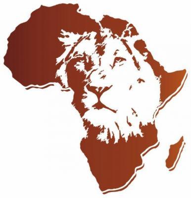 Afri320 lion afrique pochoir style pochoir