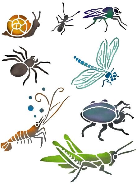 An3008 pochoir insectes
