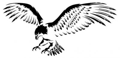 An3258 aigle en vol pochoir a peindre mon artisane style pochoir