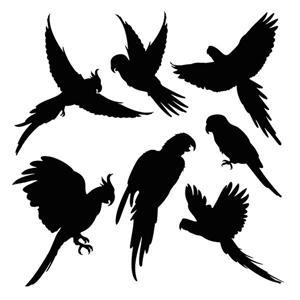 An7603 pochoirs de perroquets silhouettes a peindre style pochoir mon artisane