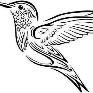 An801 colibri pochoir a peindre
