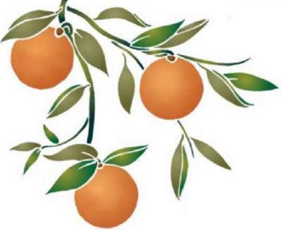 Fl010 pochoir 3 fruit oranges style pochoir