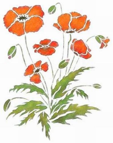 Fl086 pochoir fleur coquelicots style pochoir 1