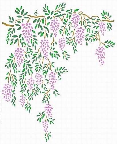 Fl182 pochoir fleur glycine tombante style pochoir 1