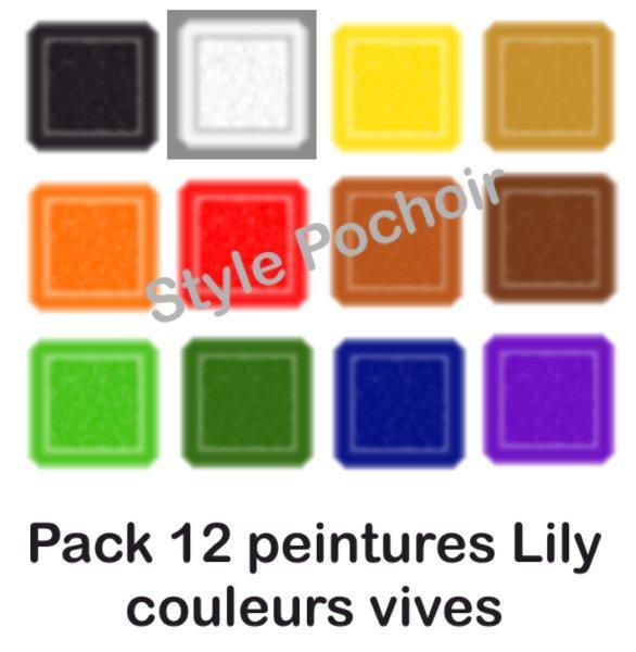 Pack 12 peintures lily vives