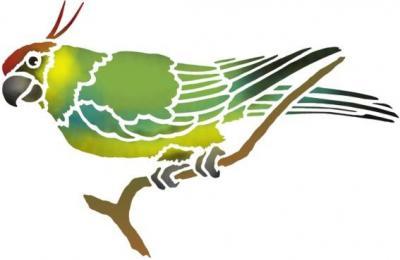 Perruche 2 pochoir a peindre perroquet oiseau exotique