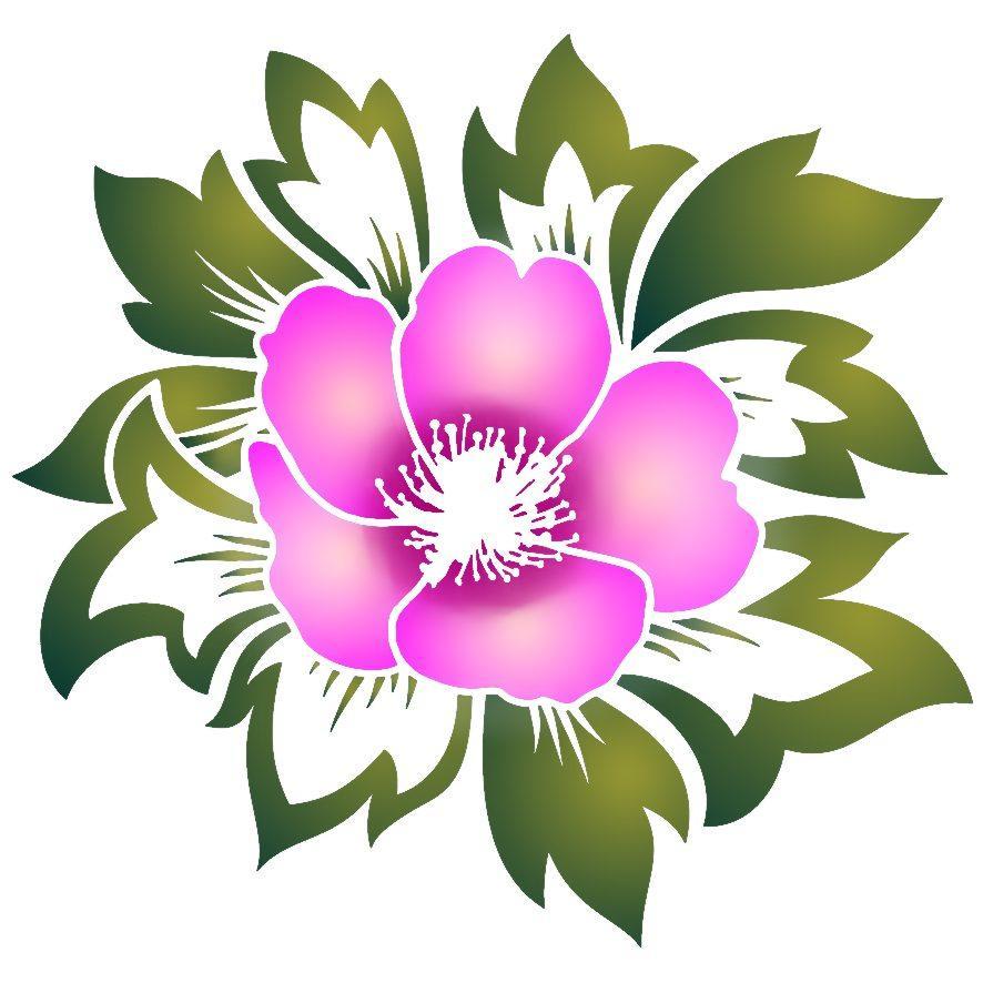 Stipo1102 fleur des champs p