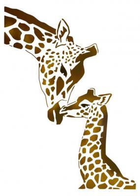 Stipo1522 girafespcoulpp