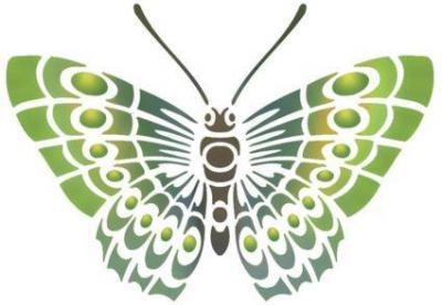 Stipo88 papillon de dessus